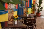 4-henry_morgan_pub_pizzeria_lamezia_terme.jpeg